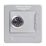Customized Grey Combination Safe